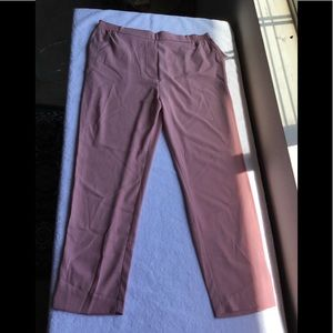 Anthropologie / Pull on Trouser Capri NWT